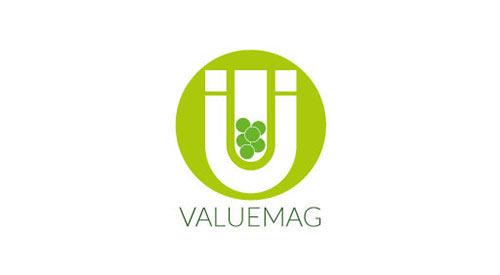 valuemag webinar final programme