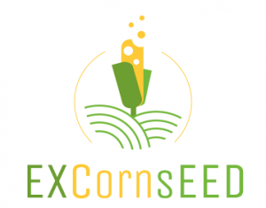 EXcornseed