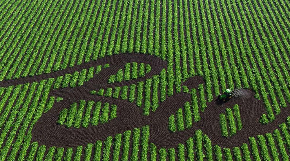 Schriftzug Bio vor grünem Feld