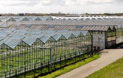 Landwirtschaft und Gartenbau