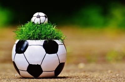 sport bioökonomie