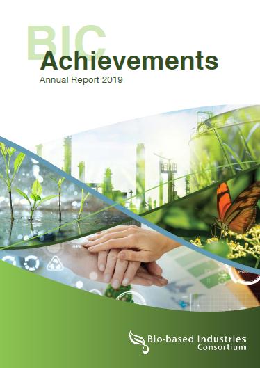 bic annual report 040520