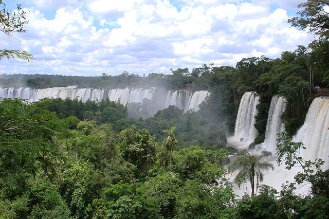 fördermittel für bioökonomie projekte mit brasilien