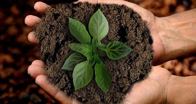 Forschung für Nachhaltigkeit FONA