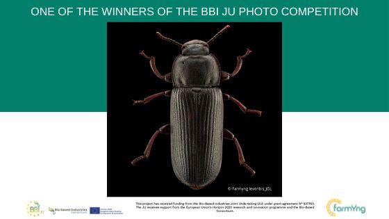 Il progetto FARMŸNG tra i vincitori del contest fotografico organizzato dalla BBI JU