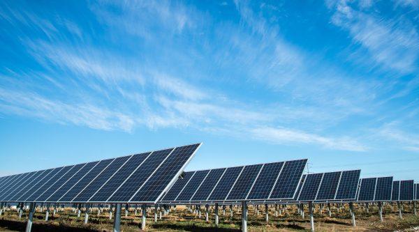 SDE+ subsidie zonnepanelen zakelijke markt