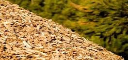 SDE subsidie voor uw biomassa-project