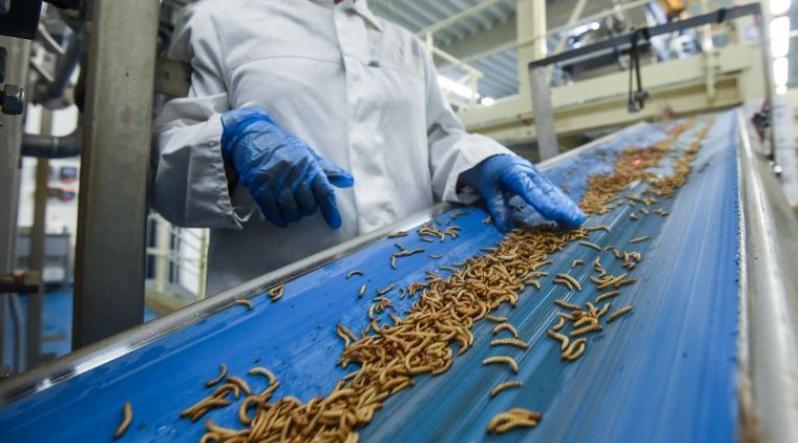 20 miljoen EU-subsidie voor bouw eiwitten-bioraffinaderij FARMŸNG