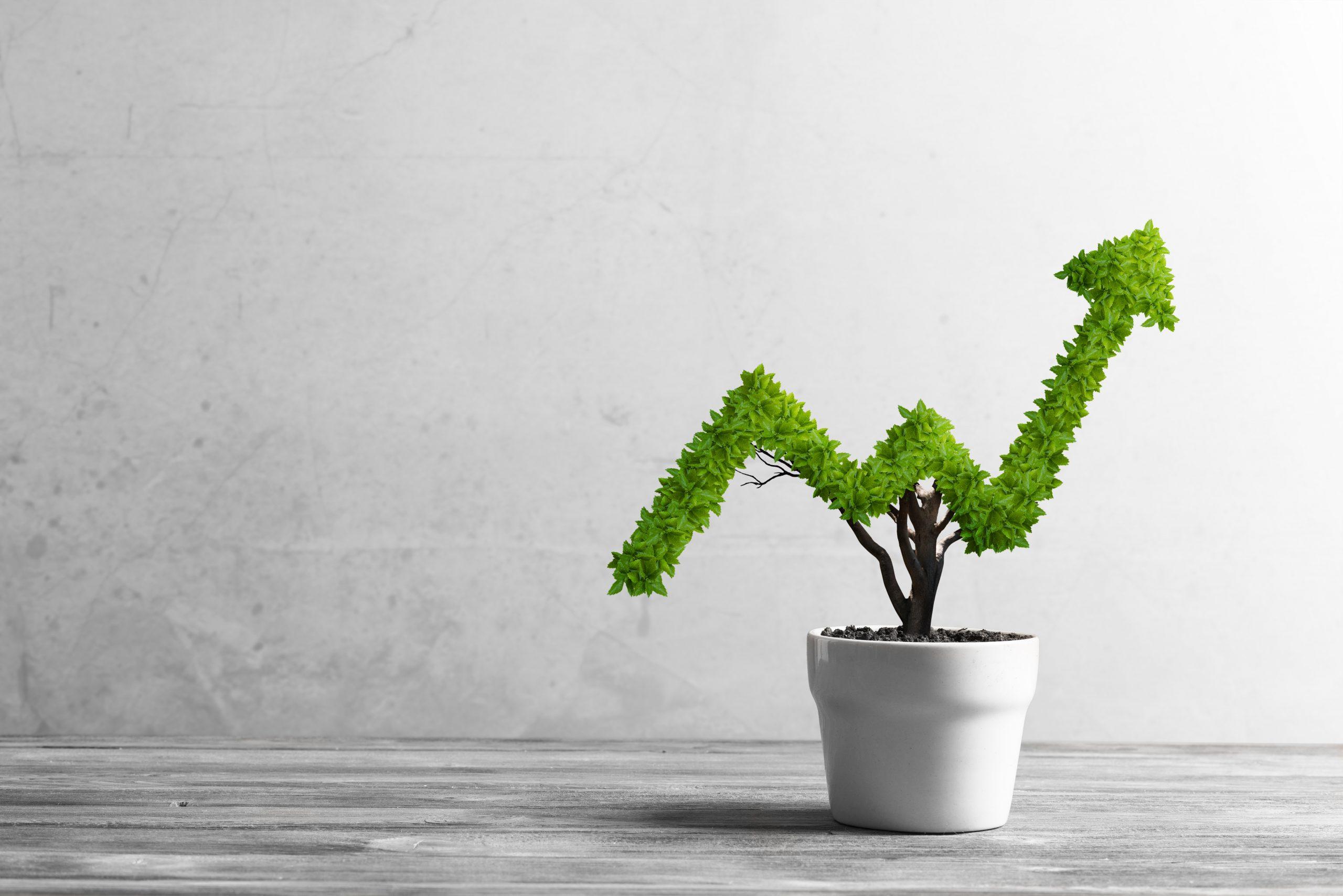 BIK-regeling voor investeringen