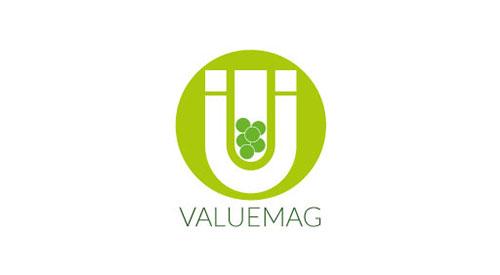 VALUEMAG logo